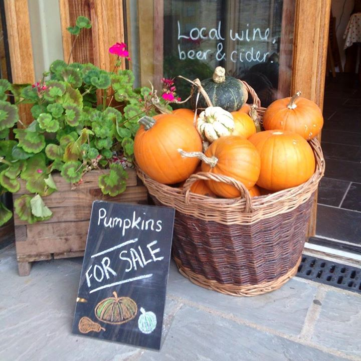 Pumpkins at Harts Barn
