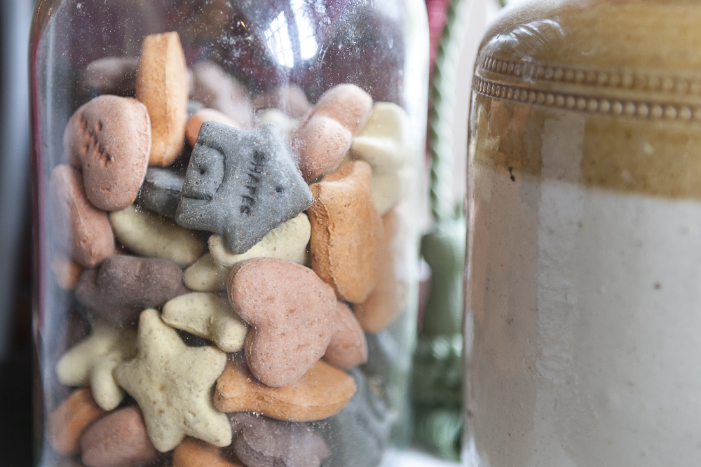 A photo of a jar containing dried dog biscuits of different colours, on the windowsill inside the Red Hart.