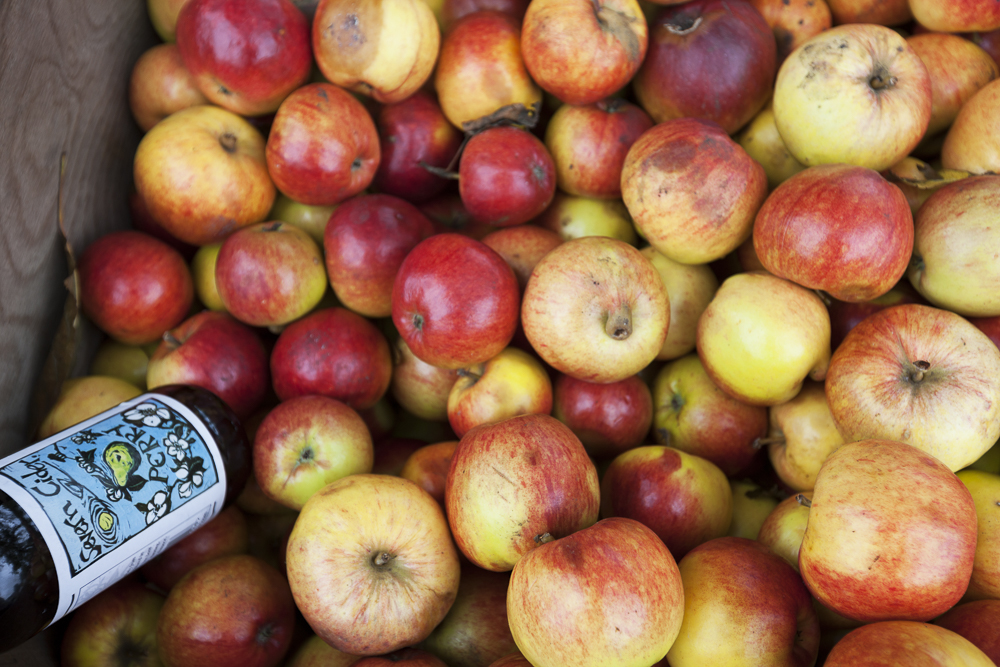 Severn Cider: ne of our greatest local cider producers