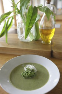 Wild garlic soup