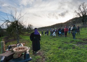 wassail, life of reilly, band, folk, folklore, orchard, apple, cider,
