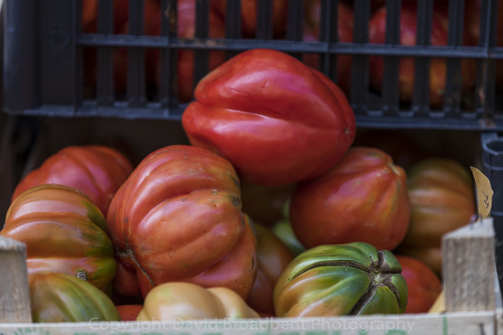 tomatoe, David Broadbent Photography