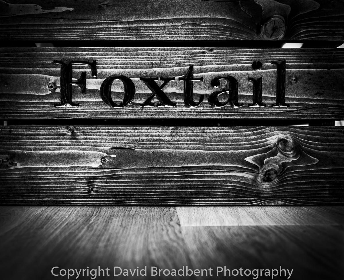 gin, drinks, Foxtail gin, spirit, Summerhouse Studios, David Broadbent Photography,